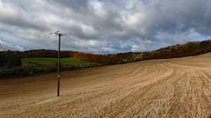 Andridge-Common,-Radnage