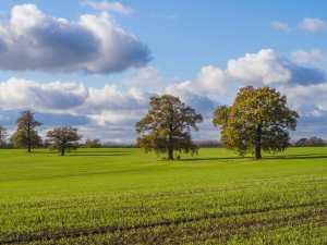 Tollgate-Farm-near-Welham-Green