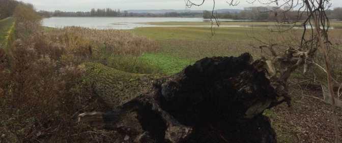 Wilstone-Reservoir-in-December