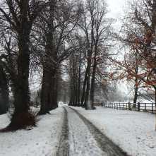 The-Mundens-in-December