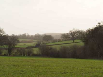 Kingshill-Dell,-Chipperfield
