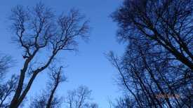 Winter,-Bovingdon