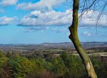 Ivinghoe-Beacon-and-the-Ashridge-Estate-from-Wendover-Woods