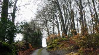 Chiltern lanes near Stokenchurch