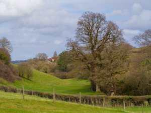 Upper Tump, English Bicknor