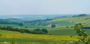 The view from the Downs towards The Thames Valley