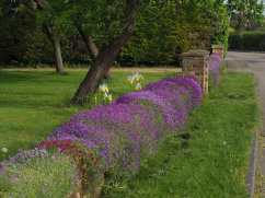 Edlesborough village garden