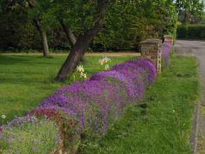 Edlesborough village garden