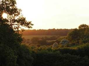 Evening light, Sarratt