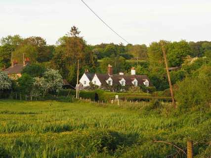 Frogmore Meadow, Sarratt