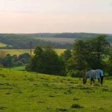 Gade Valley from Gaddesden Place