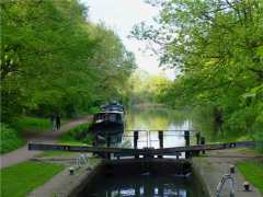 Grand Union Canal, Cassiobury Park, Watford