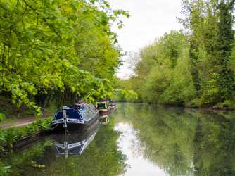 May evening on The Grand Union Canal, Croxley, Hertfordshire