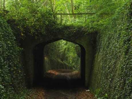 Spooky Lane, Nettleden
