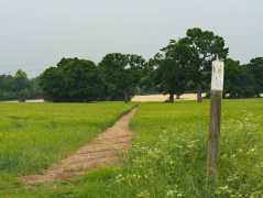 The footpath to Letchmore Heath