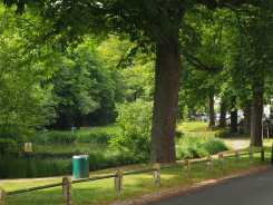 Village pond, Letchmore Heath