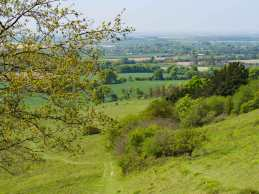 Watlington and The Thames Valley from The Chilterns