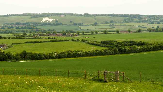 Whipsnade Lion viewed from Gallows Hill