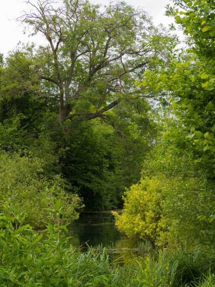 Chalfont Park, Chalfont St Peter