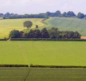 Lilley Bottom Farm