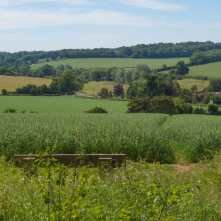 The Gade Valley from Hoo Wood