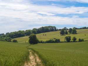 Woodhill Farm, Nettleden Road