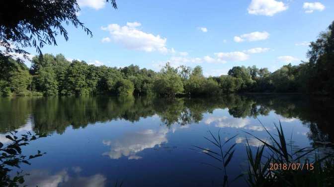 Freys Valley Nature Reserve, Uxbridge
