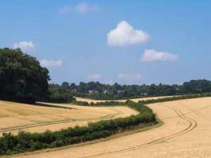 Summer skies over Penn, Buckinghamshire