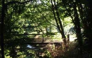 The River Pinn
