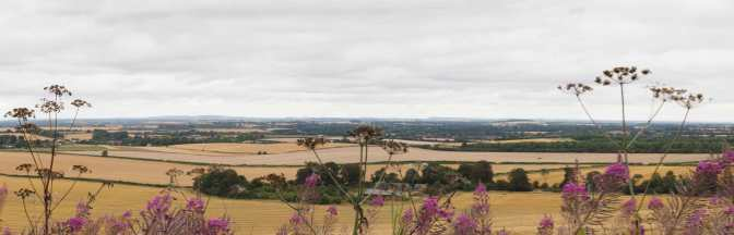 The Oxfordshire Clay Vale in August from The Chilterns