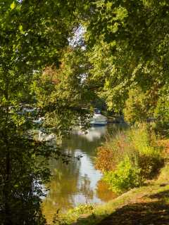 The Thames through the leaves, Old Windsor