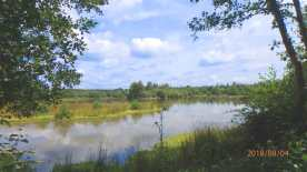 Woorsgreens Lake, Forest of Dean