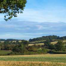 Early Autumn, North Chilterns