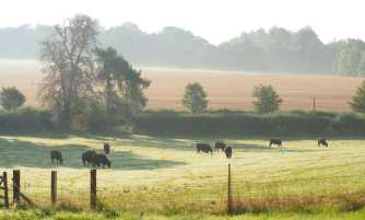 Early September in The Mimram Valley, North Hertfordshire