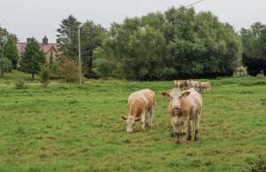 Hoo Farm, Whitwell
