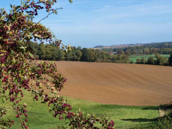 South Bedfordshire in Autumn