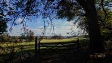 Golden Valley Farm, Ashridge