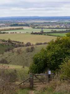 Pitstone Windmill and The Chilterns from Ashridge