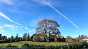 Blue skies, brown trees, Wynches, Much Hadham