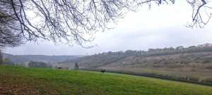 Denner Hill, Bryant's Bottom