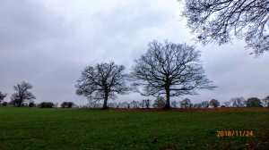 Hawbushes Farm, Great Kingshill