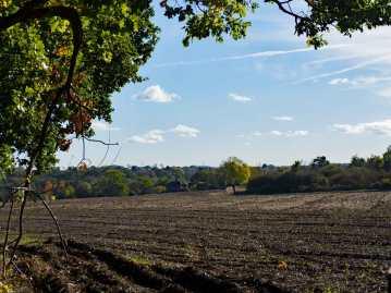 Hertfordshire countryside near Much Hadham