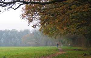 Prestwood, Saturday morning in November