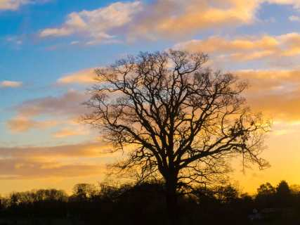 December sunrise in Sarratt,-Hertfordshire