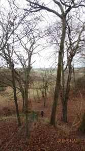 Sundon Hills to Greensannds Ridge
