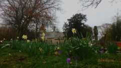 All Saints, Rotherfield Peppard, mid-February