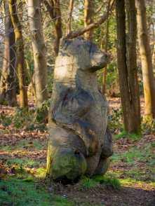 Bearly wood