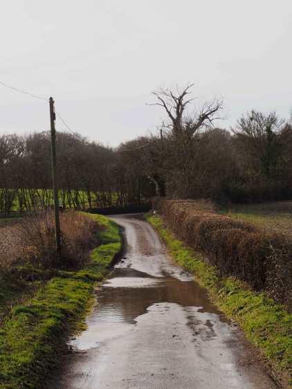 Winter lanes