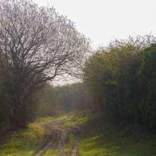 Green Lanes, Totternhoe