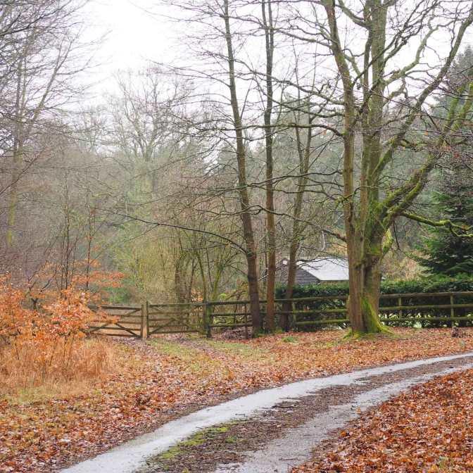 Keepershill Wood